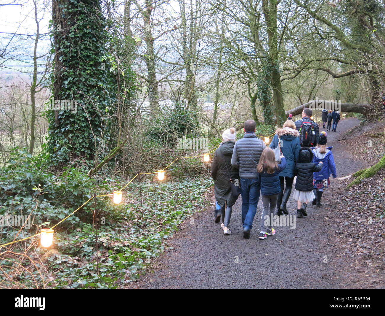A ramble in the woods and climbing tree trunks is fun for all the family in the gap between Christmas and New Year; Waddesdon Manor, December 2018 - Stock Image