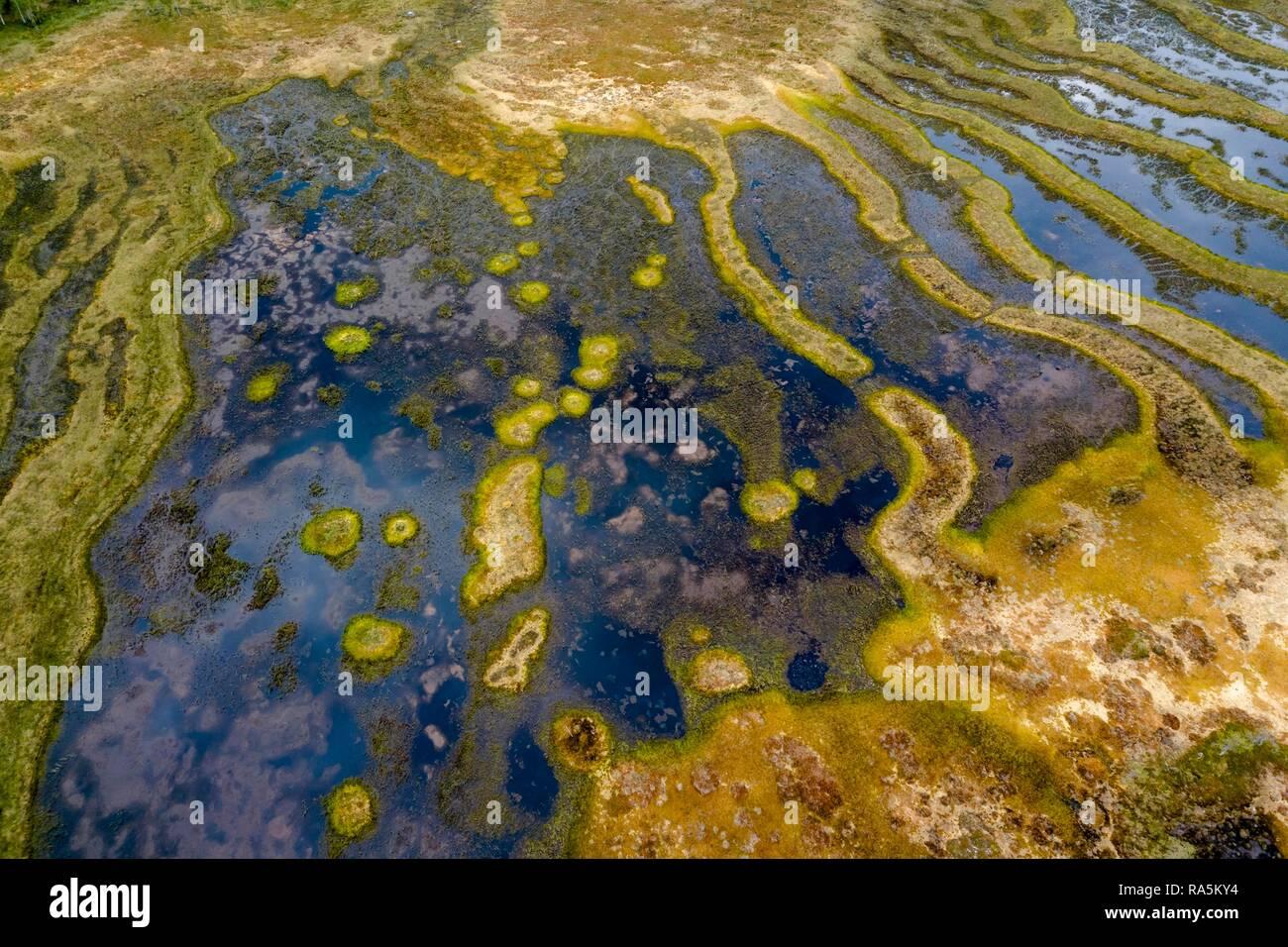 Drone shot, moor landscape, wetland, abstract structures, Junsele, Västernorrlands län, Sweden Stock Photo