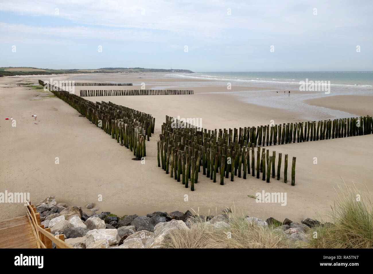 Wooden posts sea defences to protect sand dunes at Wissant France - Stock Image
