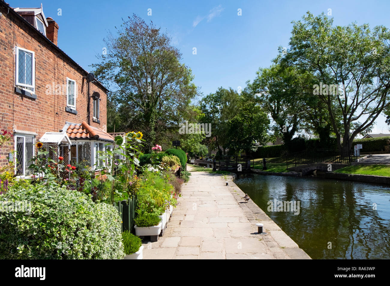 Towpath alongside cottages at Turnerwood, Chesterfield Canal, Worksop, UK - Stock Image