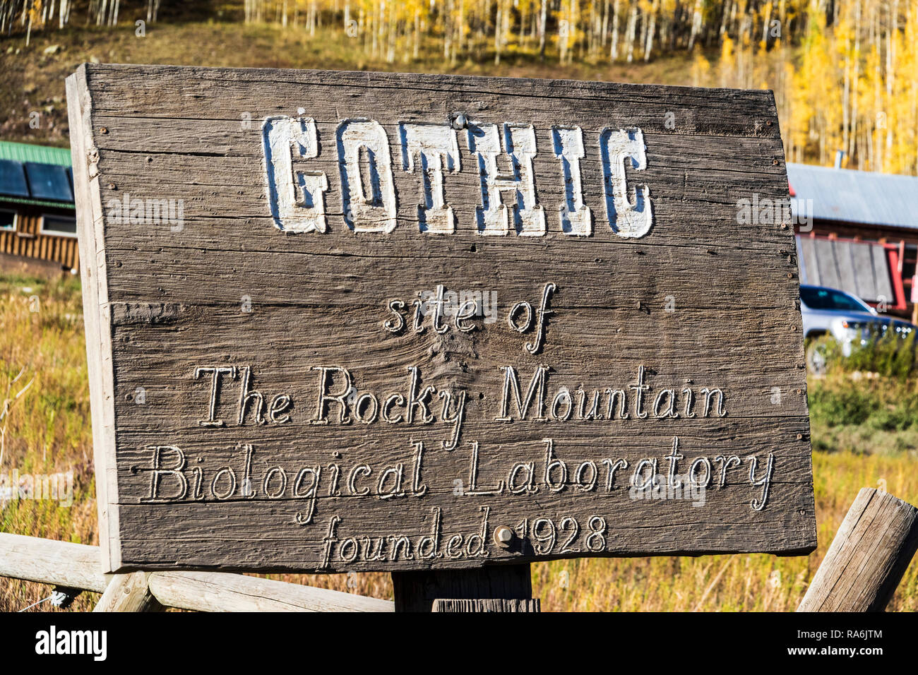 Rocky Mountains Biological Library area along Gothic Road in Colorado. - Stock Image