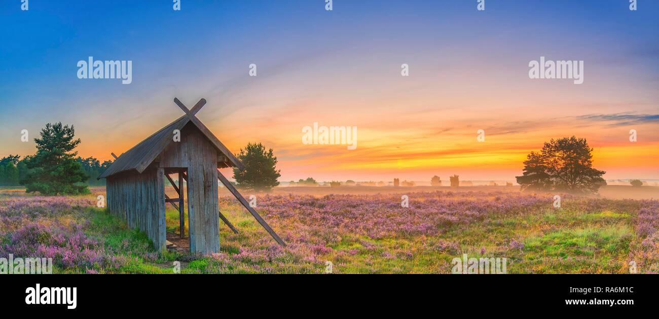 Apiary, Lunenburg Heath, Undeloh, Lower Saxony, Germany - Stock Image