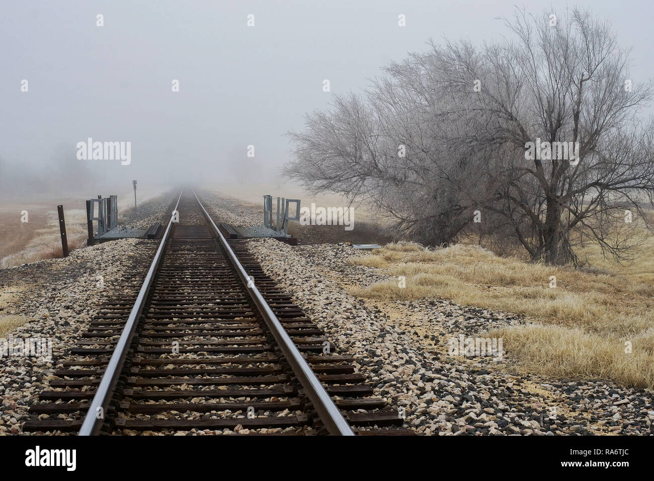 Railroad tracks in Alpine, Texas, on a foggy winter evening. - Stock Image