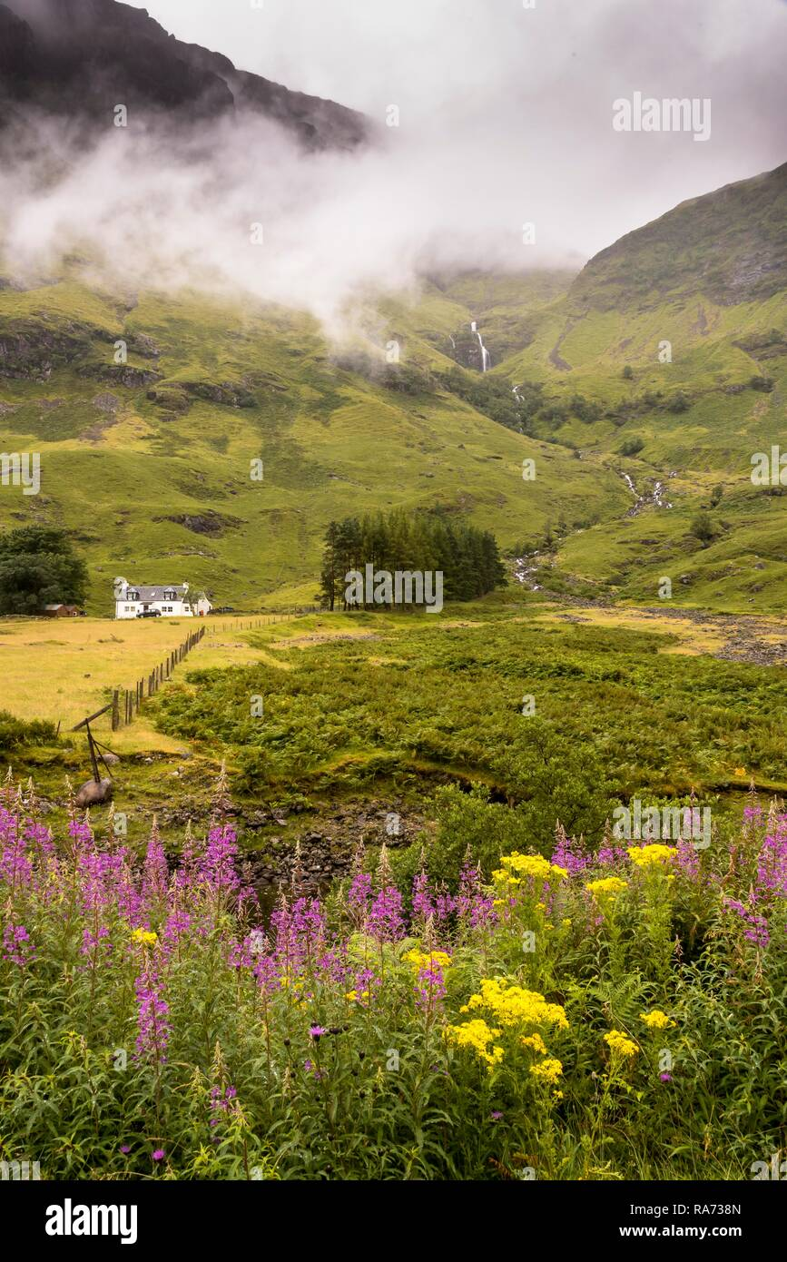 Typical landscape on the Isle of Mull, Inner Hebrides, Scotland, Great Britain - Stock Image