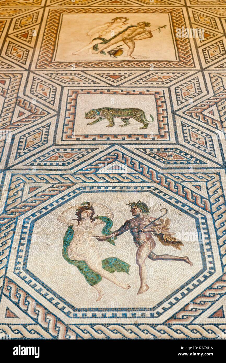 Dionysus Mosaic Stock Photos & Dionysus Mosaic Stock Images