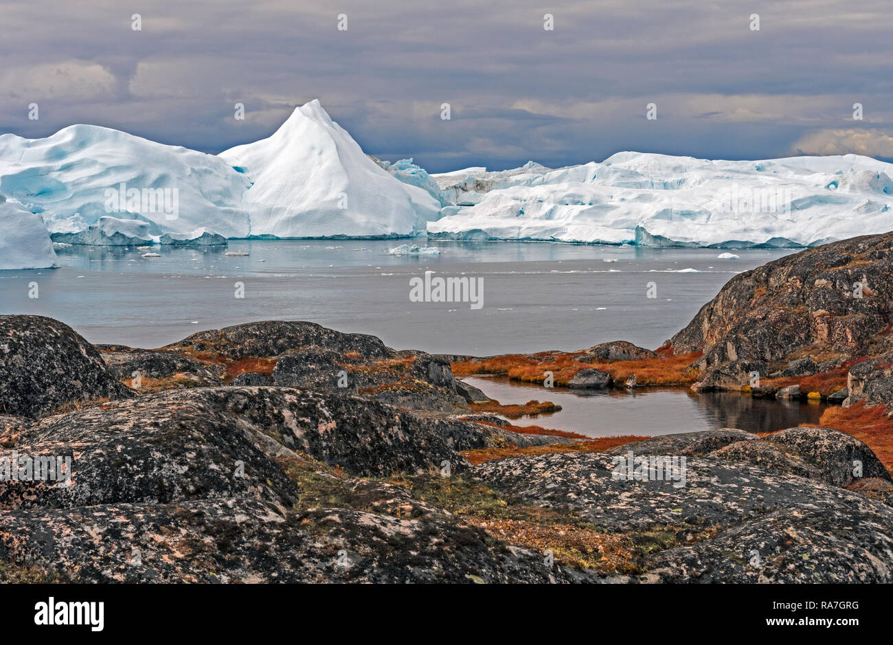 Colorful Coastlands along an Arctic Shore near the Icefjord of Ilulissat, Greenland - Stock Image