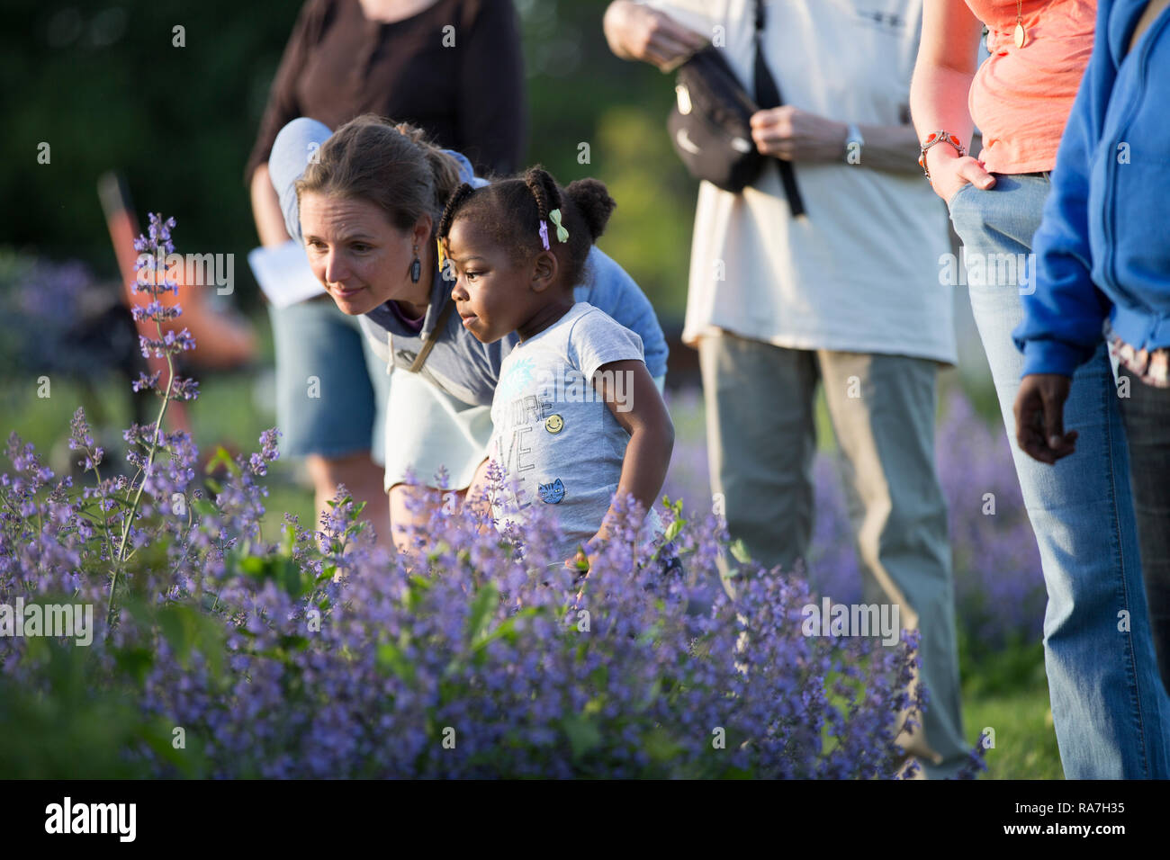 A middle aged woman bends over to look at something with a young girl in a community flower garden - Stock Image