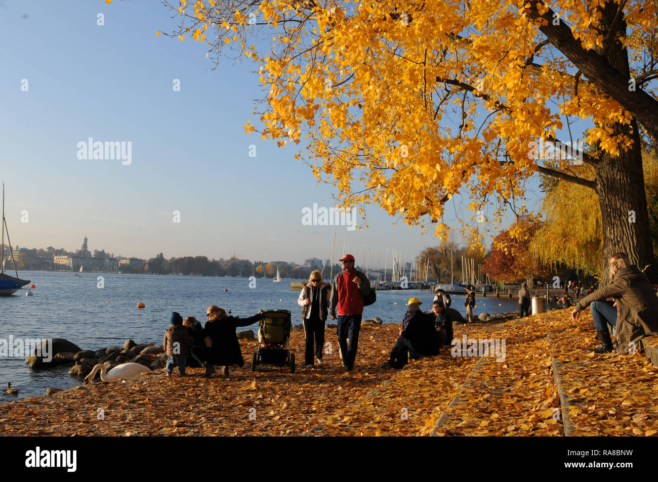 Switzerland: people enjoying autumn colors at Lake Zürich in Seefeld - Stock Image