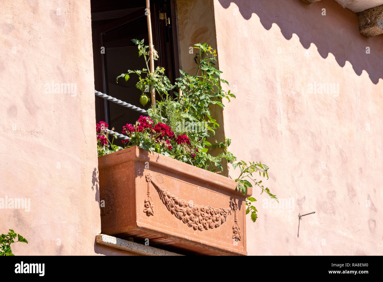 Window Box Surprise. Window Box with Contents and an Open Window with Pink Washed Wall and Roof Tile Shadows. San Pantaleo, Gallura, Sardinia, Italy. - Stock Image
