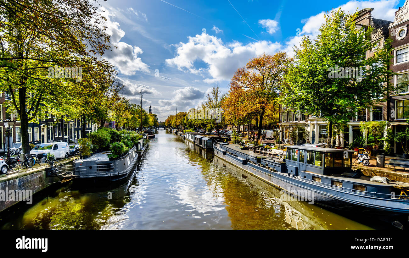 The Prinsengracht (Prince Canal) at the Lekkersluis bridge with its many house boats in the city center of Amsterdam in the Netherlands - Stock Image