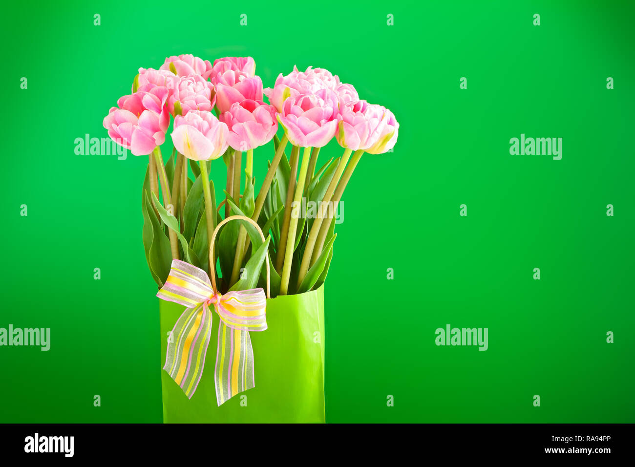 Flower bouquet of pink tulips in a vase with a multicolored bow tie on a bright green background, copy or text space Stock Photo