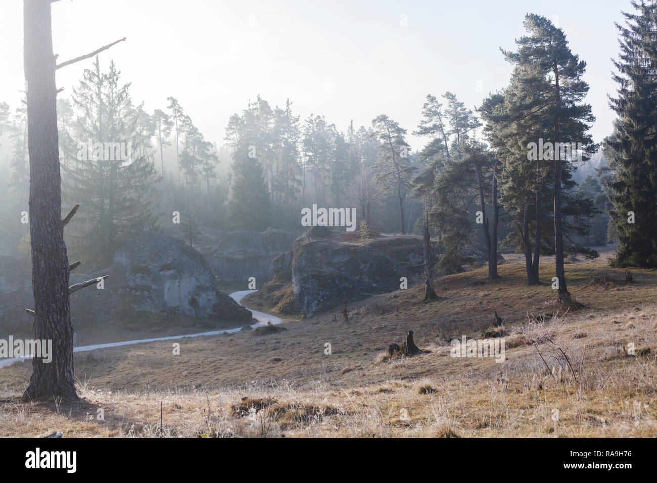 Wental / Germany  December 2016: The Wen Valley a typical dry valley of the Schwäbische Alb. There are several remarkable limestone rocks, which were  - Stock Image