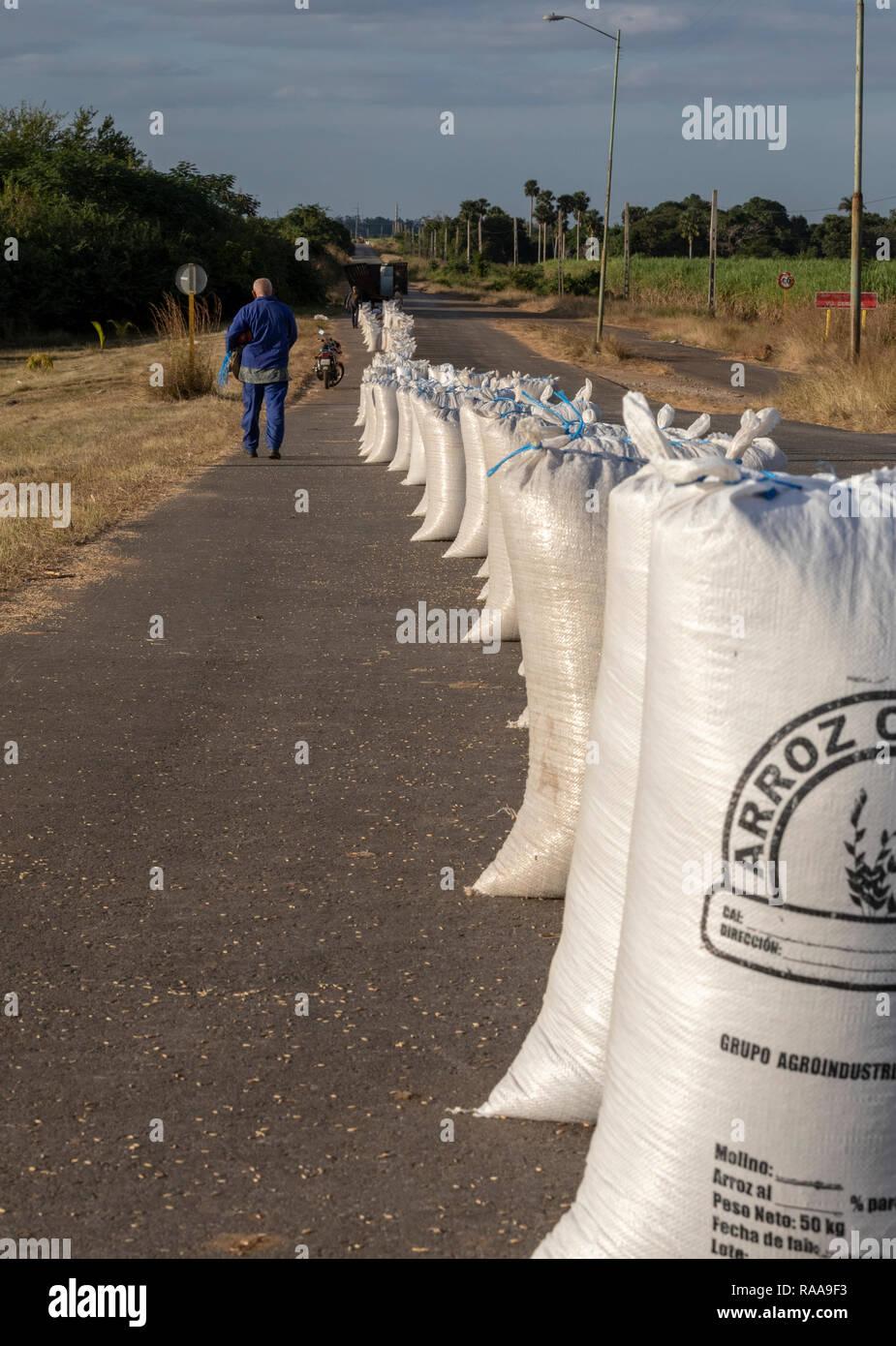 Rice sacks near Aguada de Pasajeros, Cienfuegos, Cuba - Stock Image