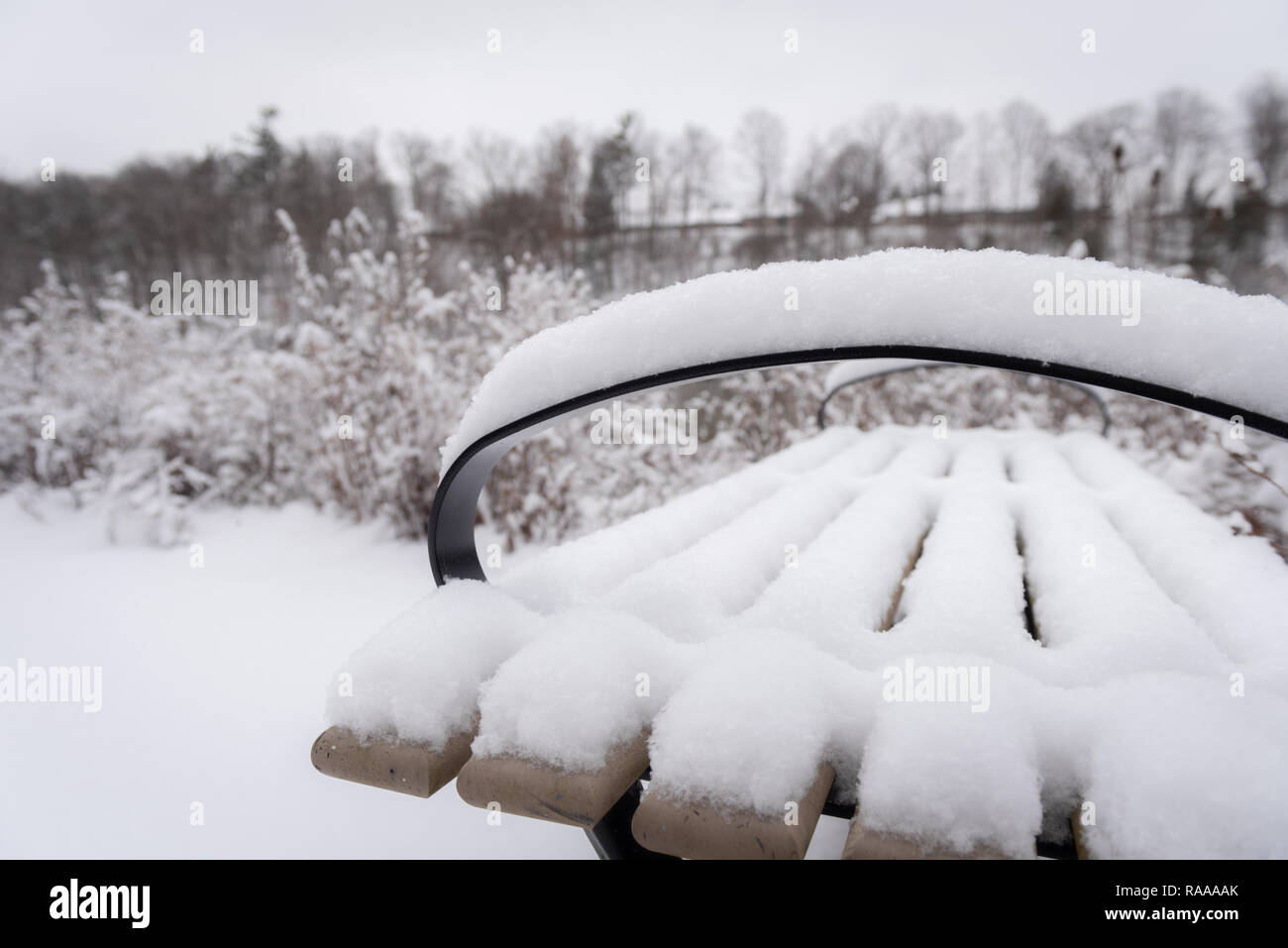 After a fresh fall of snow in London Ontario's Sprinkbank park - Stock Image
