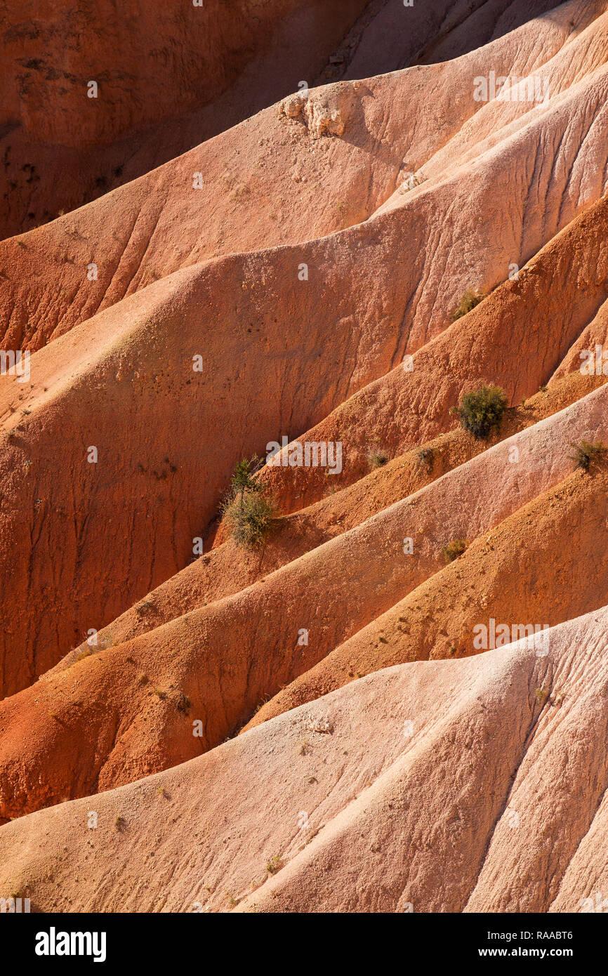 Bryce Canyon National Park, Utah, USA. Canyon walls made of eroding sedimentary limestone. Stock Photo