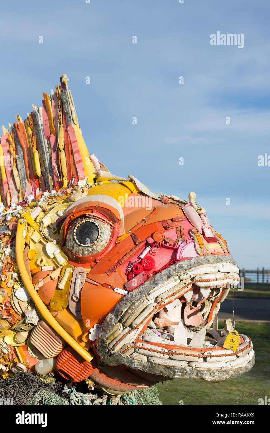 Henry the Fish, a sculpture made of plastic waste washed up on Pacific beaches, created by 'Washed Ashore' and on display in Bandon, Oregon, USA. - Stock Image