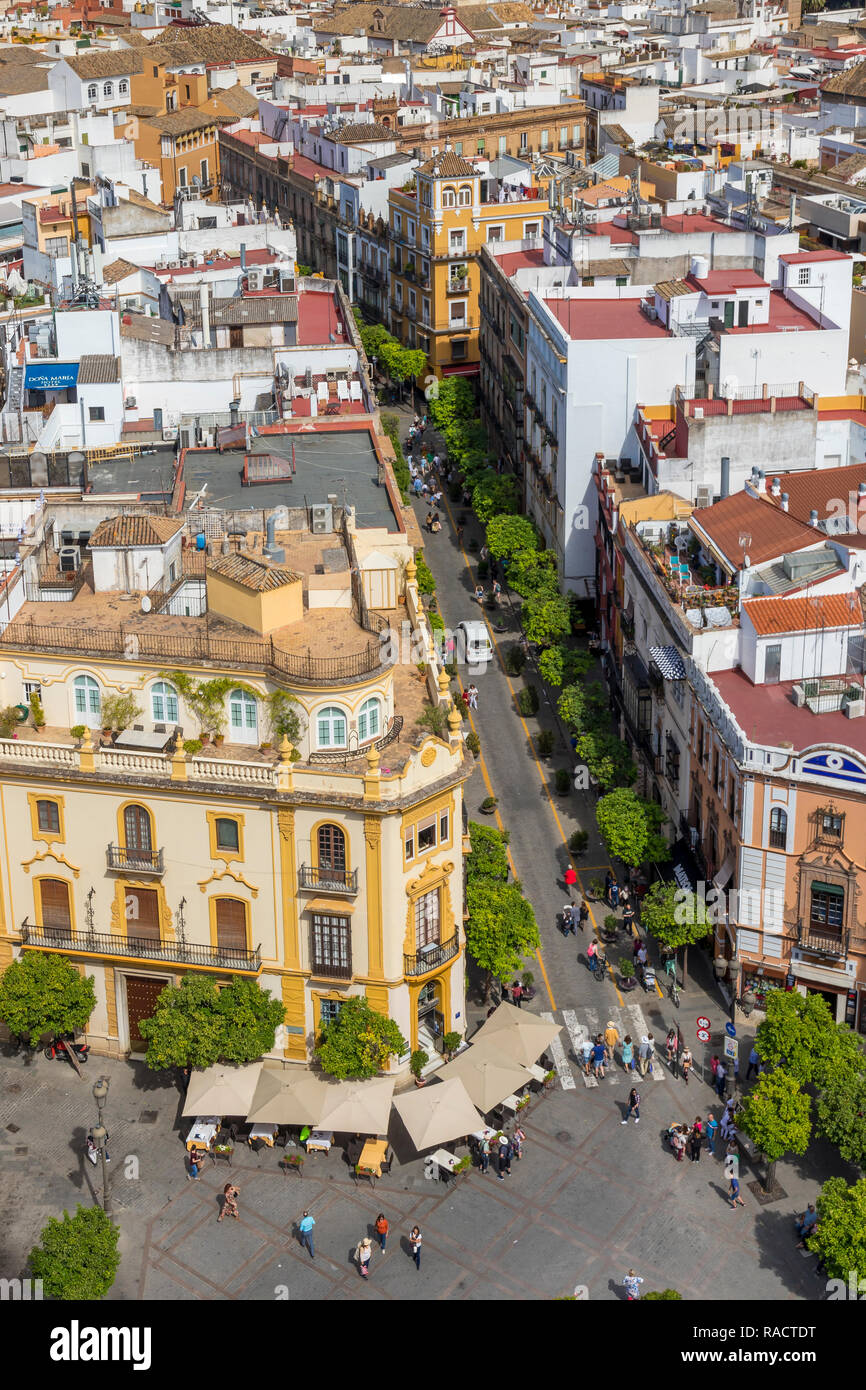 View from the Giralda Bell Tower down to the Virgen de los Reyes square, Seville, Andalusia, Spain, Europe Stock Photo