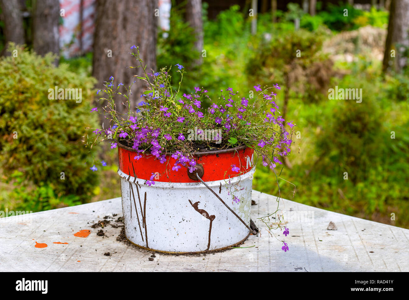 Paint Bucket On Garden Table High Resolution Stock Photography And Images Alamy