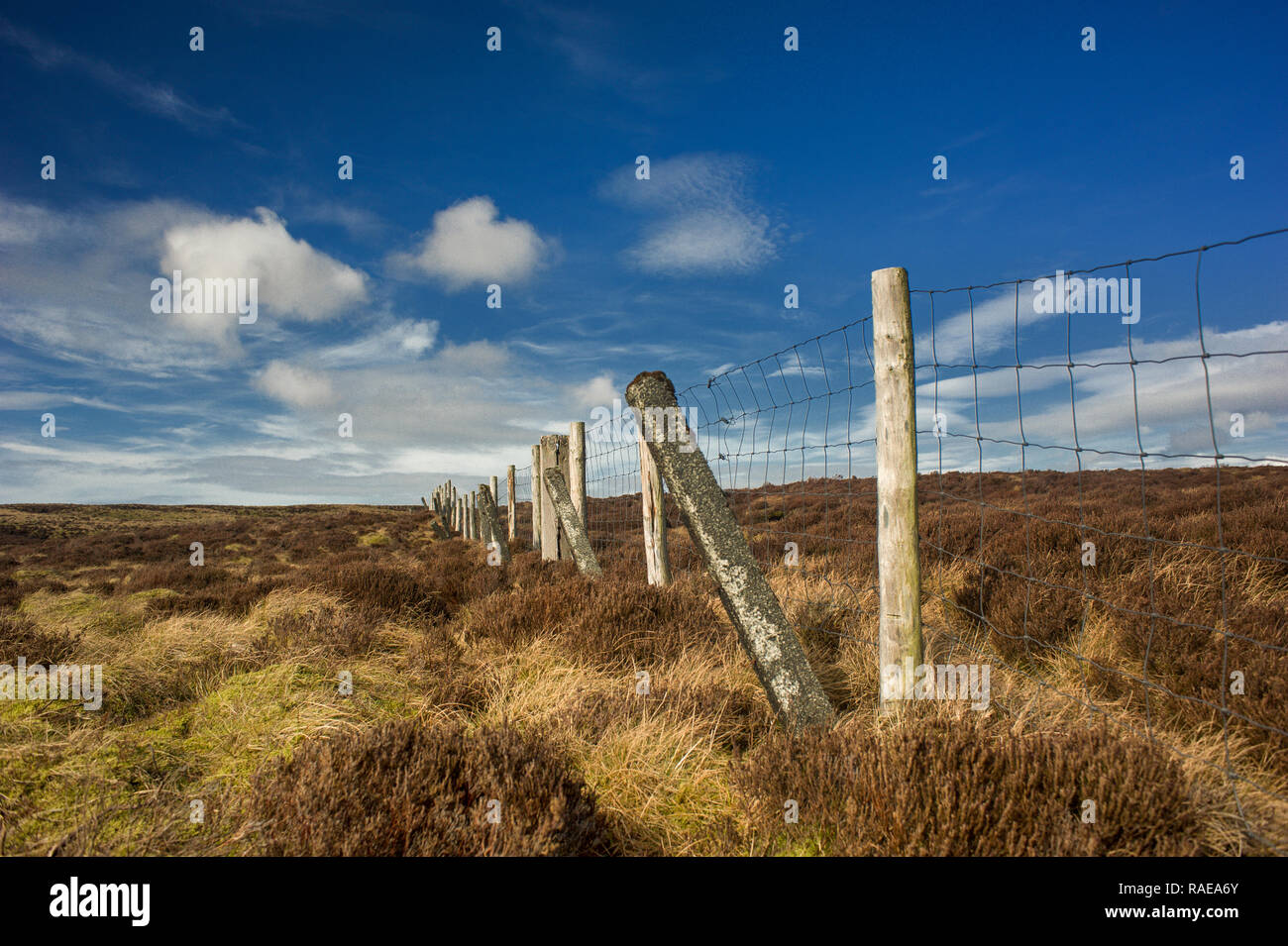 Fence on the watershed of Baxton Fell in The Forest of Bowland Lancashire - Stock Image