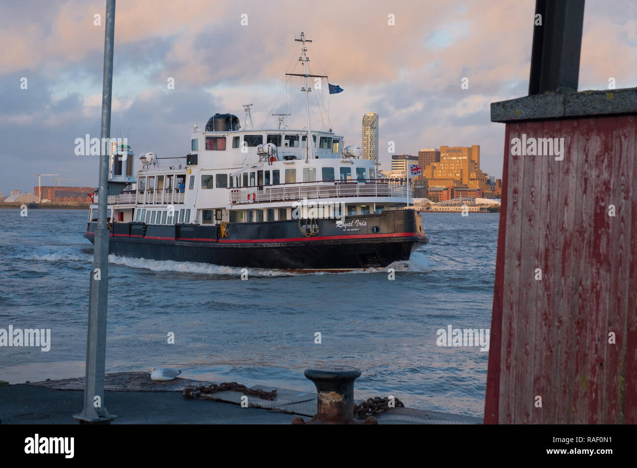 Royal Iris of the Mersey ferry on the River Mersey approaching Woodside, Birkenhead - Stock Image
