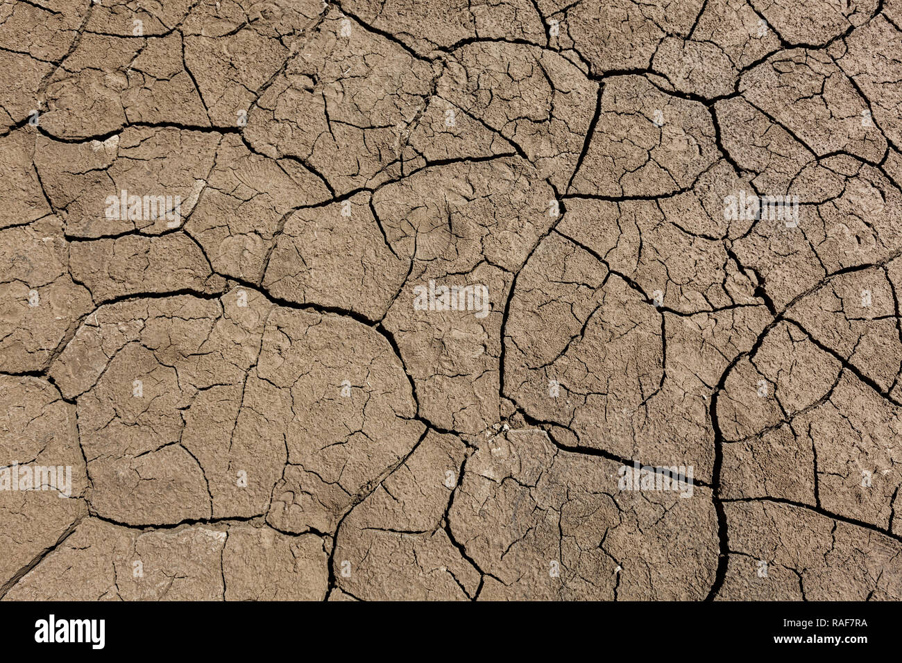 Earth ground with cracks - Stock Image