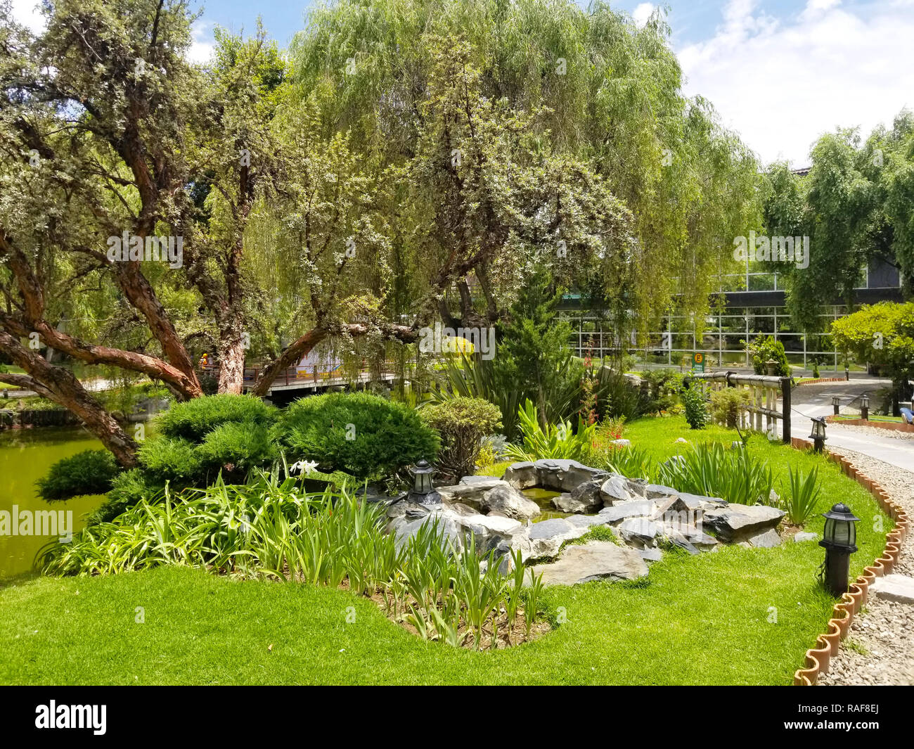 Japanese garden trees during a summer day Stock Photo