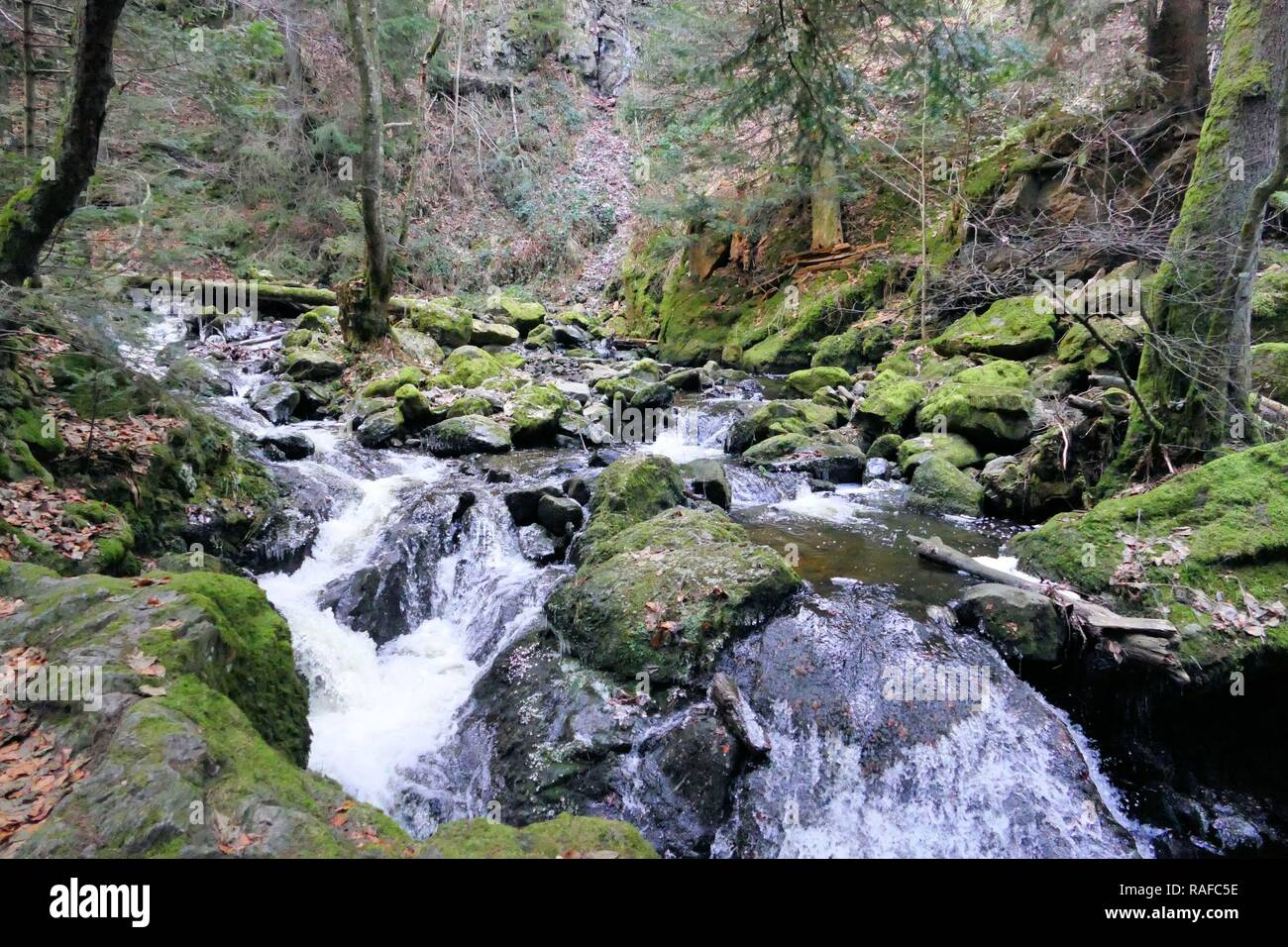 Raging Black Forest Stream - Stock Image