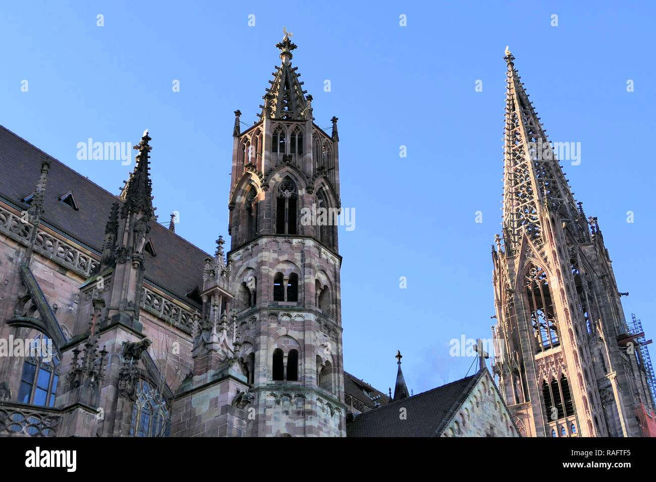 Soaring Cathedral - Stock Image
