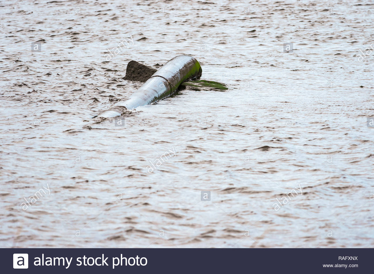 Pipe wedged between two rocks appears to be a sea creature swimming on the surface - Stock Image