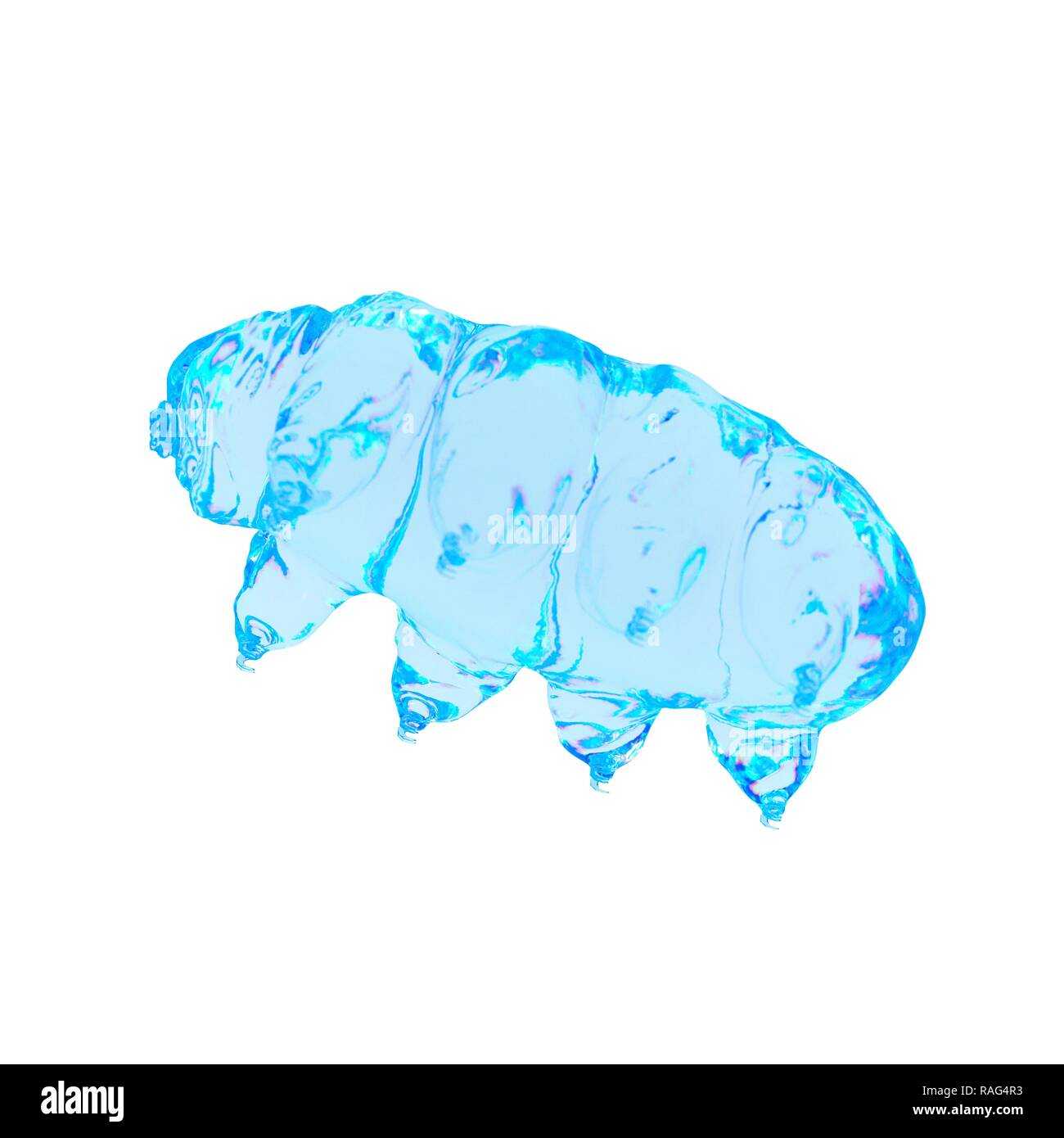 Illustration of a water bear. - Stock Image
