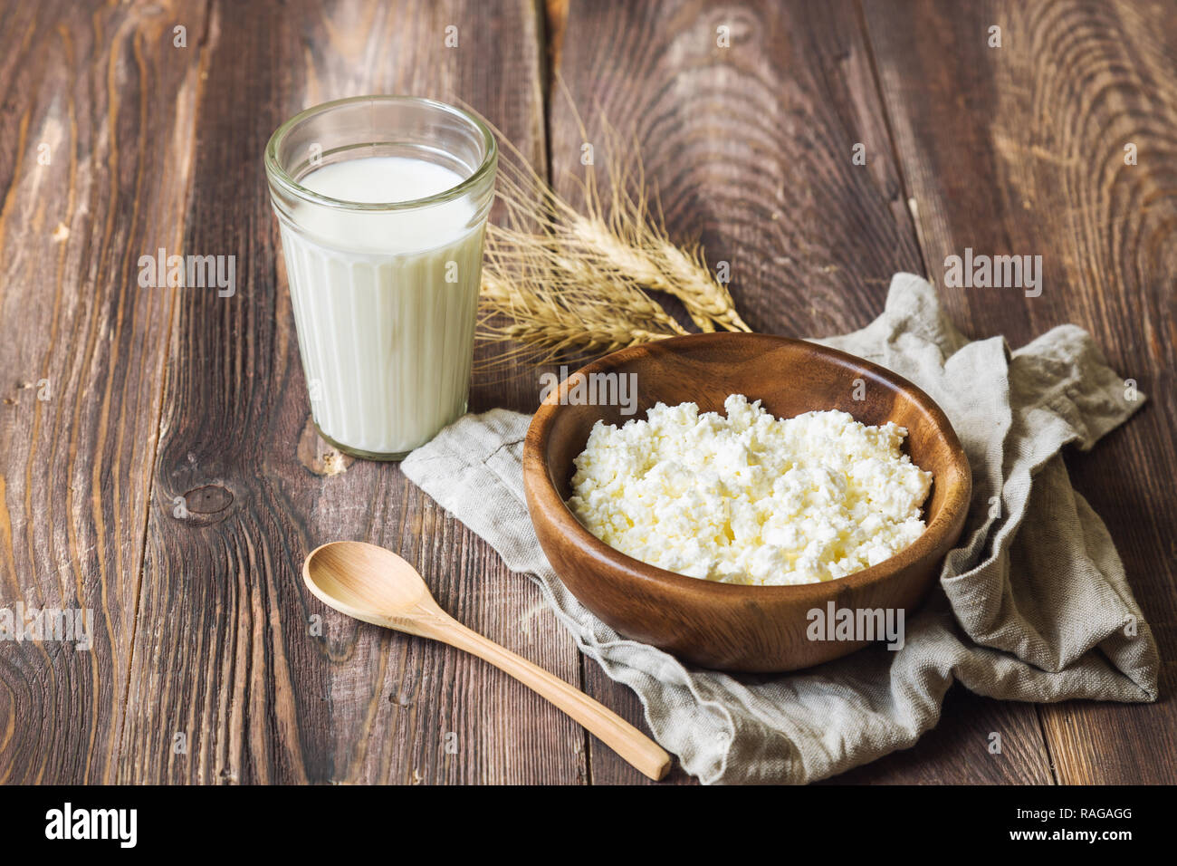 Cottage cheese, milk and ears of wheat on rustic wooden background. Dairy products for jewish holiday Shavuot. - Stock Image