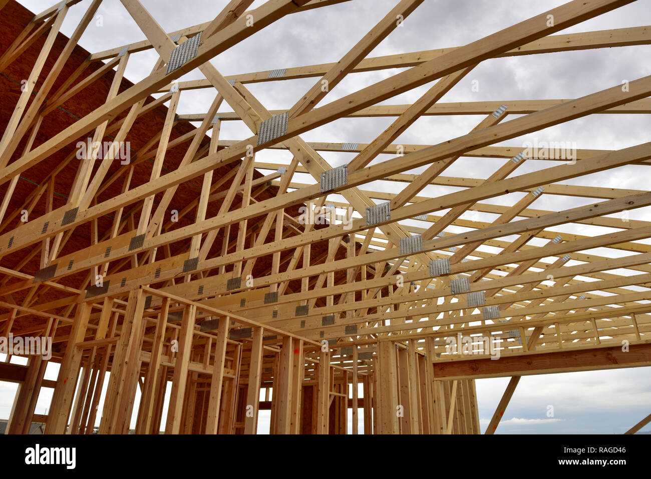 New wood frame house construction with roof trusses and stud walls, Arizona - Stock Image