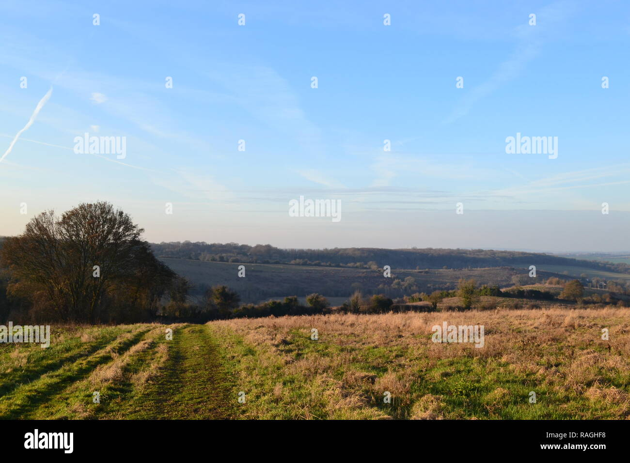 A clear blue winter sky at Romney Street, Darent Valley. Countryside in north west Kent, England - Stock Image