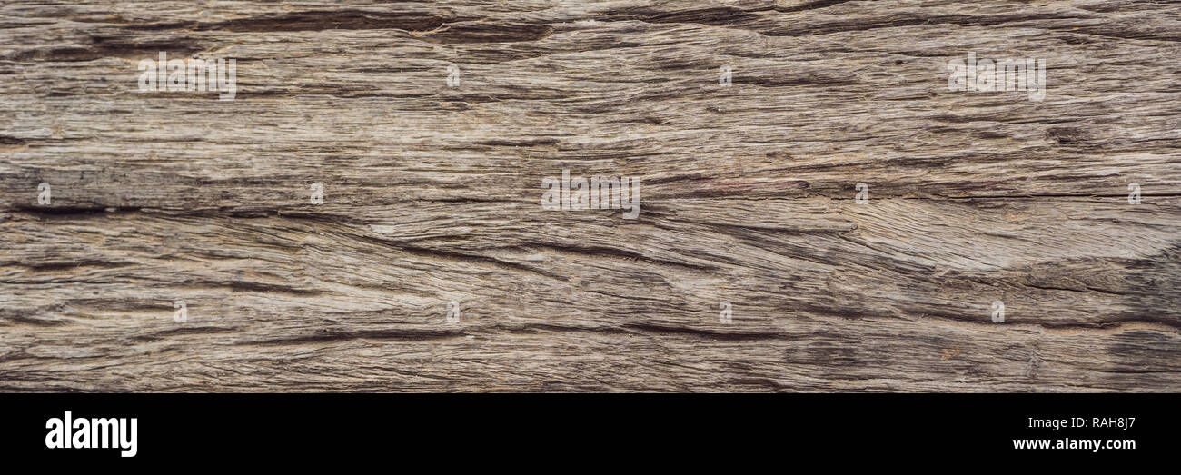 Very Old Wood Background, closeup. wood texture BANNER, LONG FORMAT - Stock Image