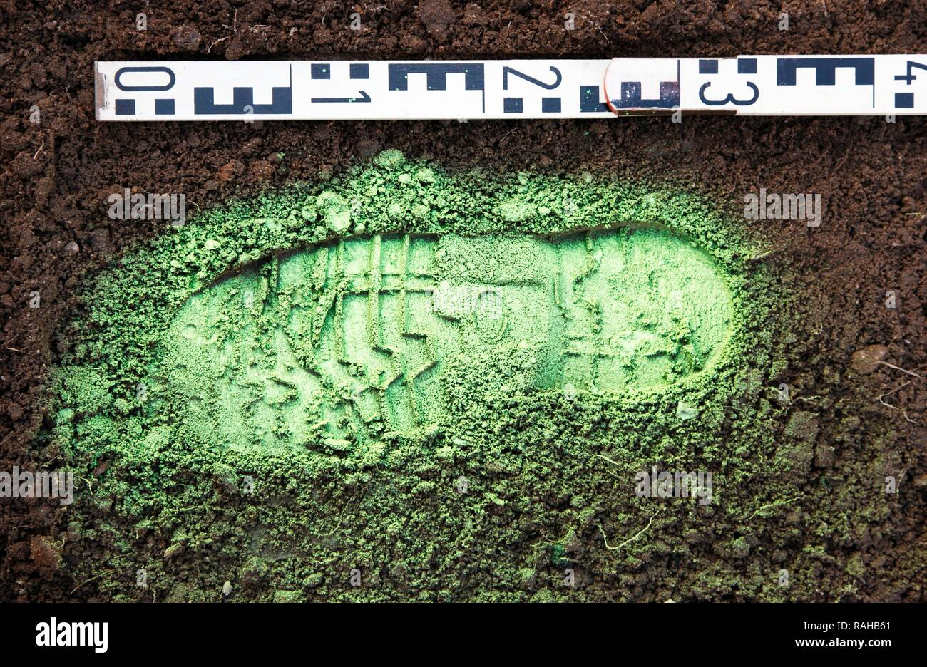Criminal investigation department, police, shoe print at a crime scene, print made visible with green spray paint and taking of - Stock Image