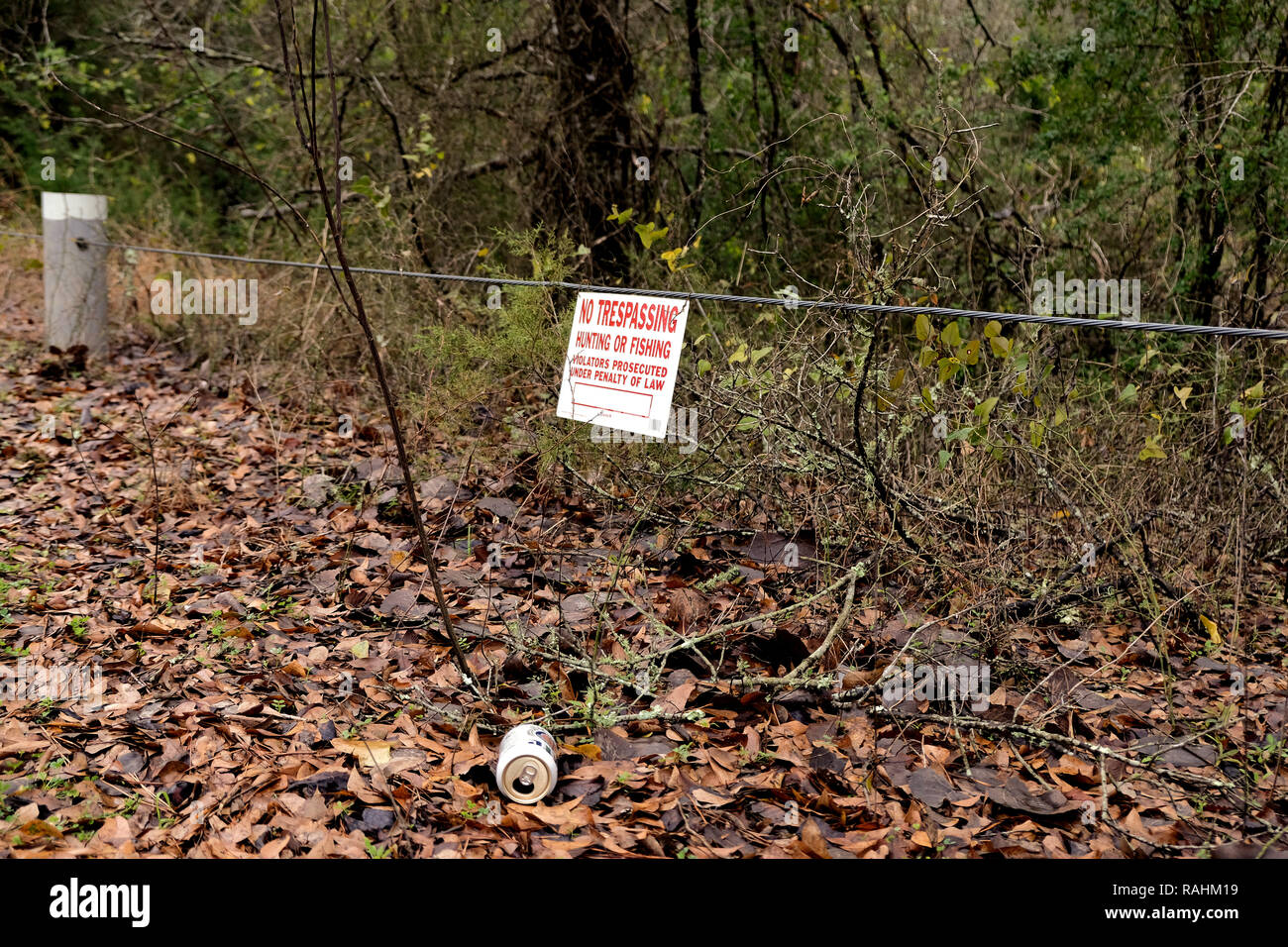 Empty beer can thrown on the ground amid leaves in nature with a No Trespassing sign above it; aluminum pollution; trash in nature. - Stock Image