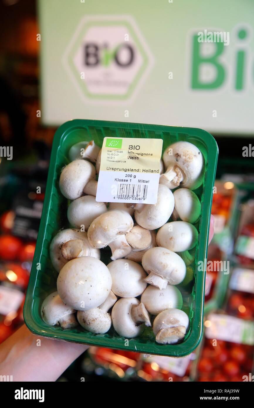 Pack of organic mushrooms, food hall, supermarket - Stock Image
