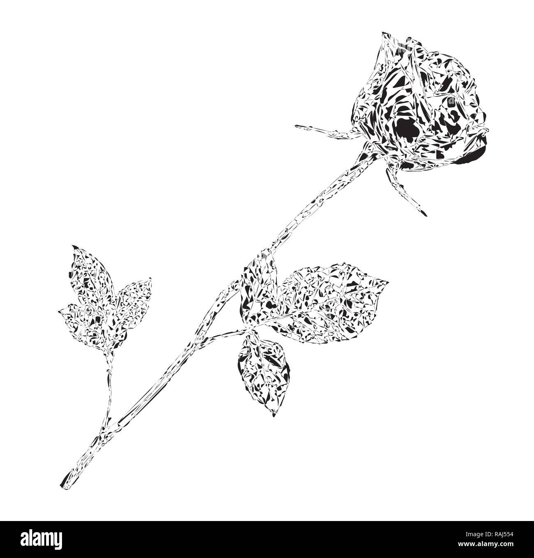Beautiful bud of rose on long stem. Monochrome   illustration, sign, symbol, clip art for valentines, love, wedding, design - Stock Image
