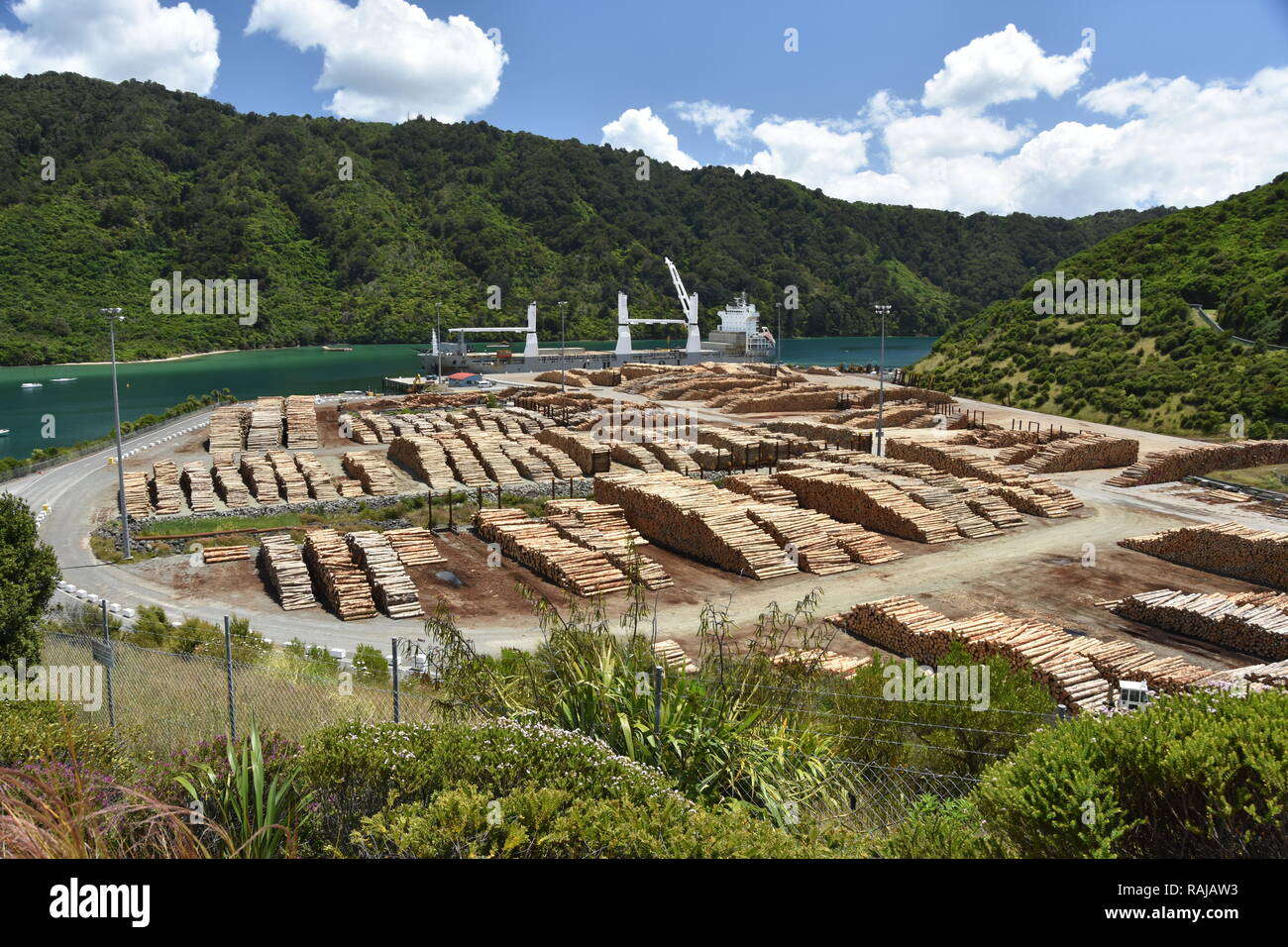 At the Waimahara Wharf in Shakespeare Bay, top of the South Island, the Chipol Huanghe awaits loading of logs for export - Stock Image