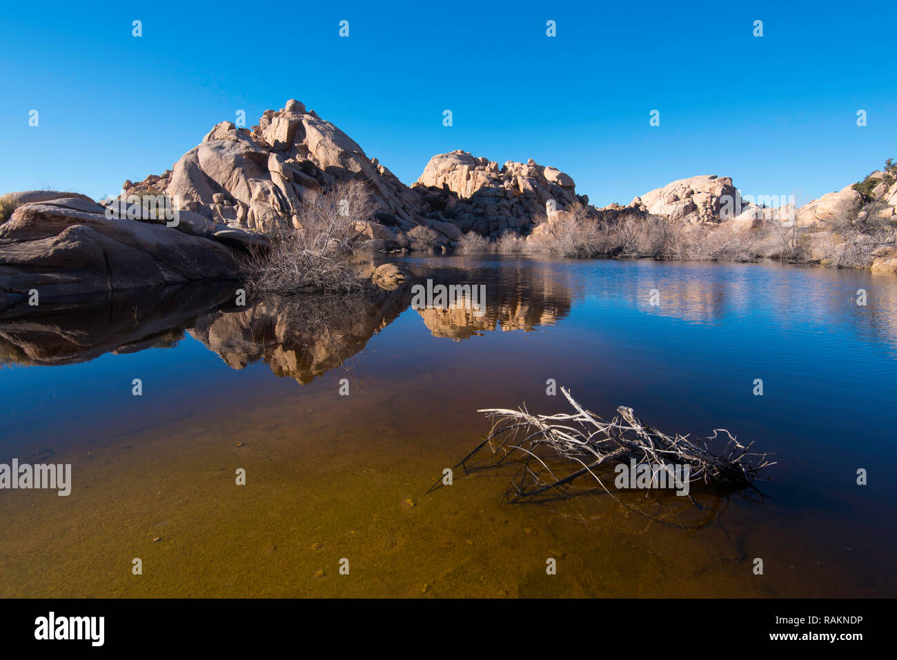 Blue sky reflected in a mirror like watering hole in Joshua Tree National Park, California, USA Stock Photo