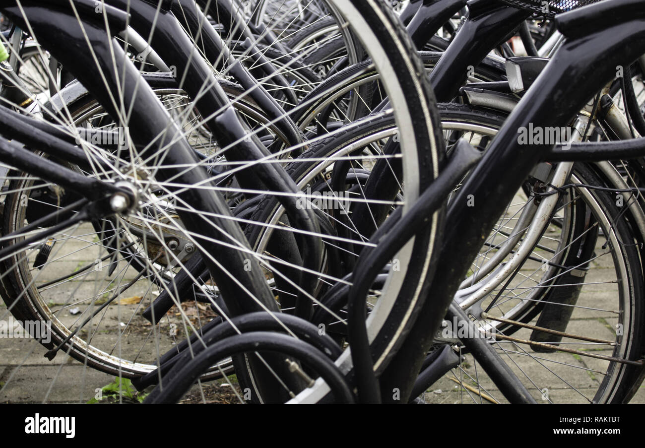 Typical bicycles parked in Holland, transport detail in the city, tourism in europe - Stock Image