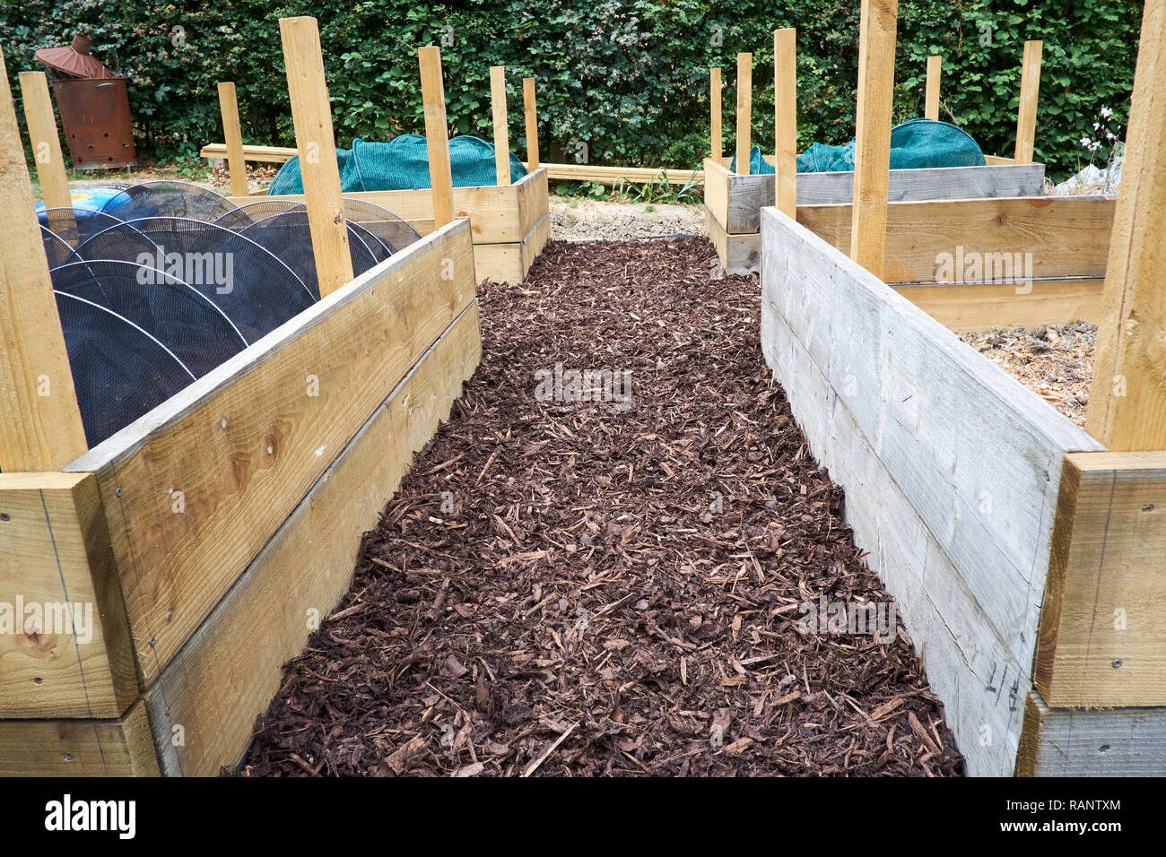 Timber Raised Bed Construction In A Vegetable Garden Uk Stock Photo Alamy