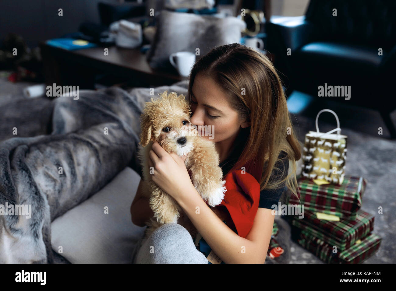 Close-up picture of the best friends tender lady and her little doggy with red curlies. Presents for christmas holidays lying on the floor. Warm hug - Stock Image