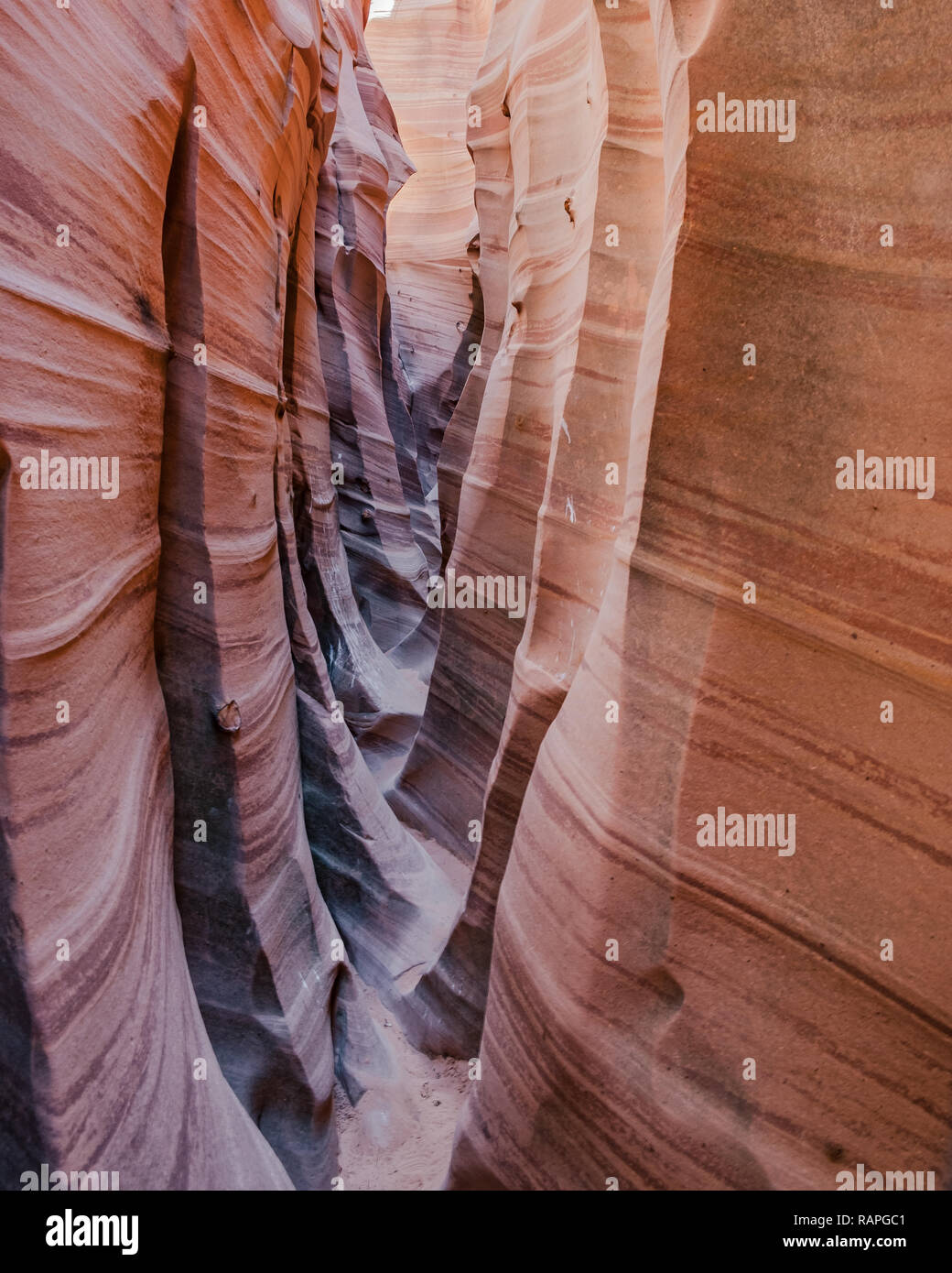 Zebra Slot Canyon in Grand Staircase-Escalante National Monument in Utah - Stock Image