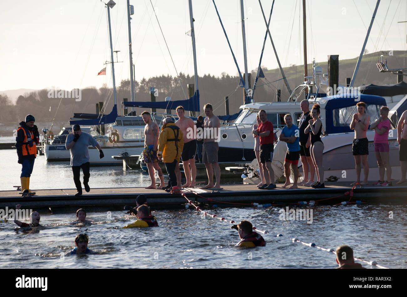 People taking part in the New Year's Swim at Rhu Marina, Scotland - Stock Image