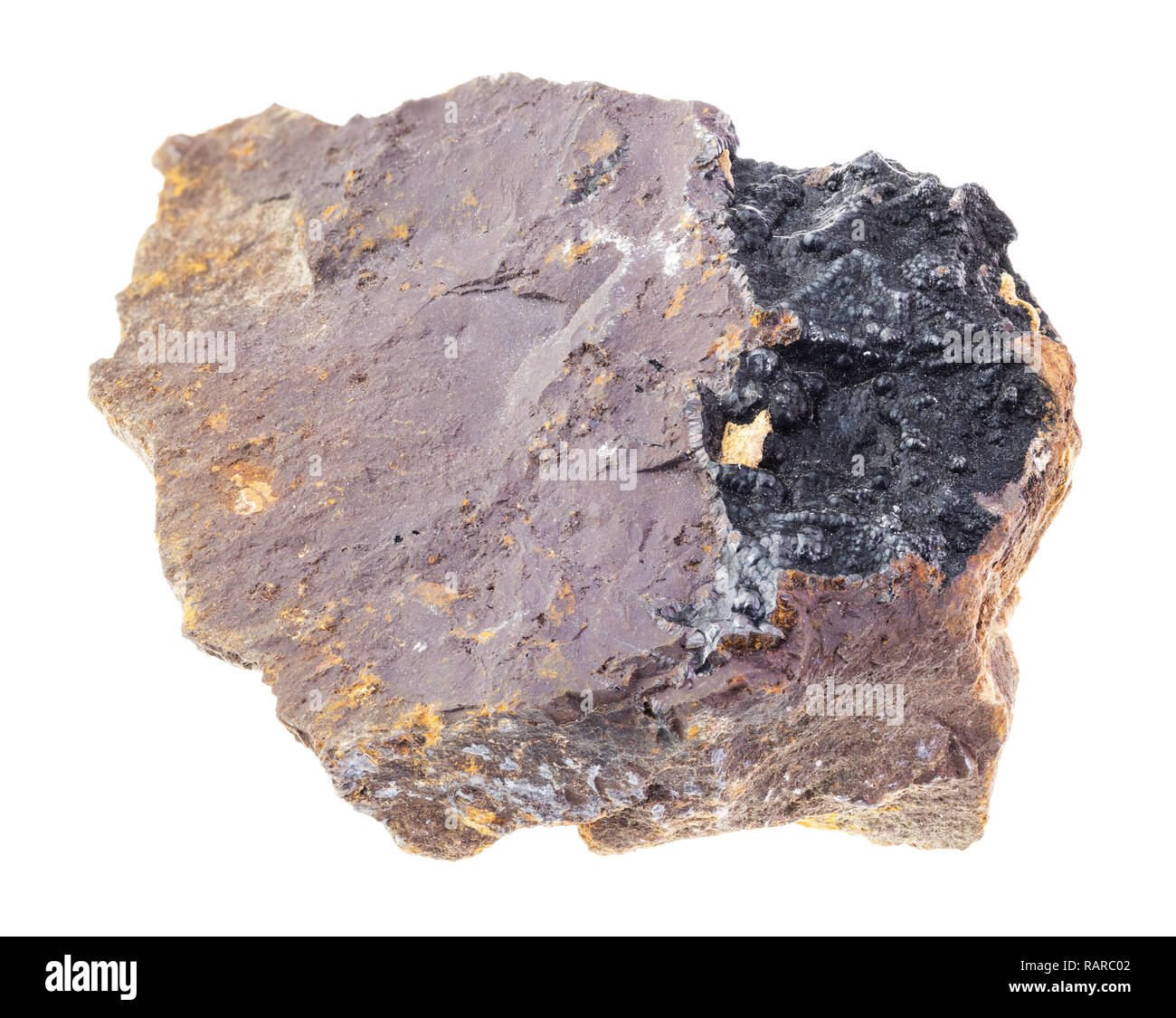 macro photography of natural mineral from geological collection - black Goethite in rough Limonite stone on white background - Stock Image