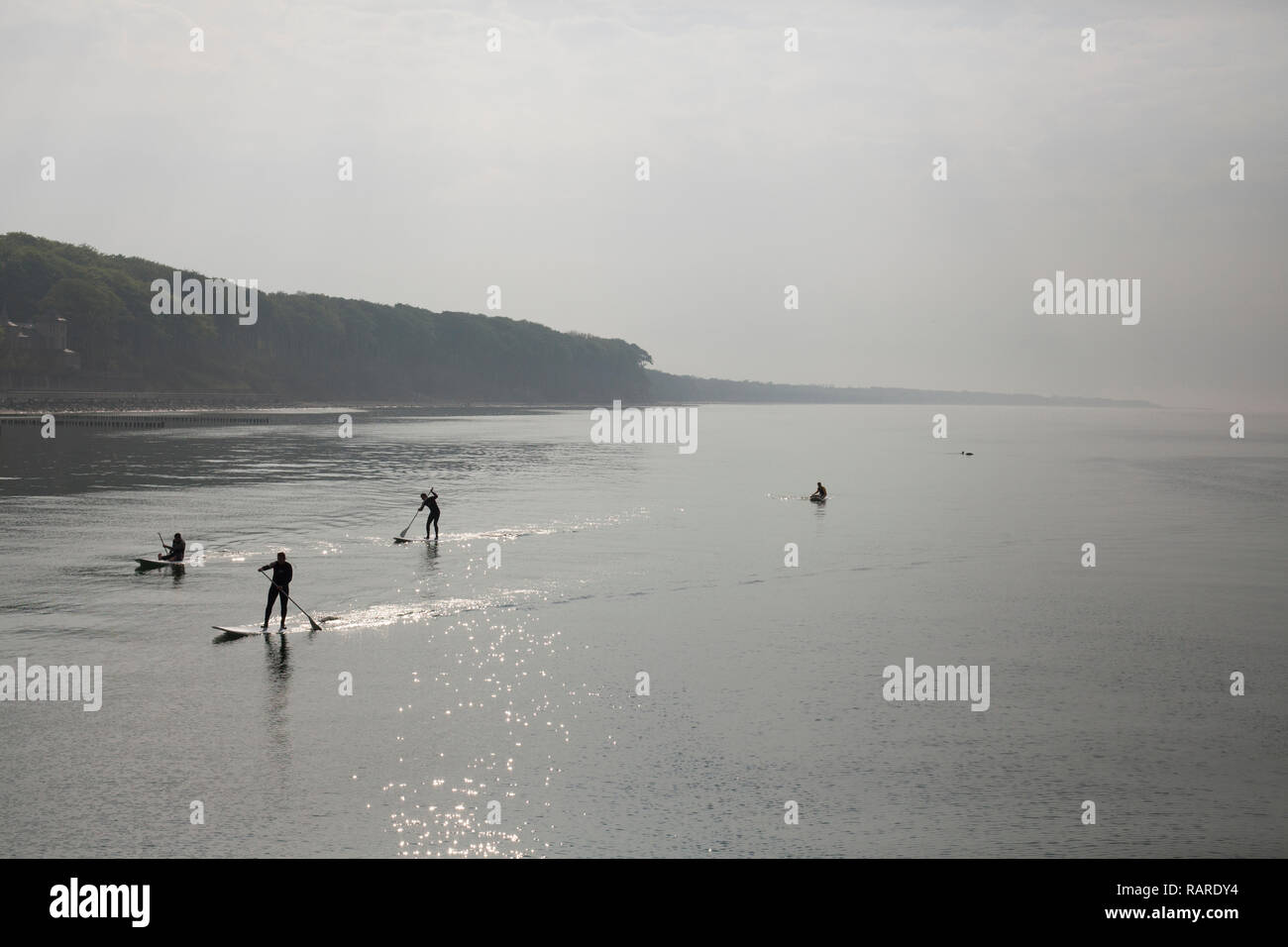 Heiligendamm, Mecklenburg-Vorpommern, Germany / May 05 2013: Four people stand up paddeling at the shore of the calm northern sea. Stock Photo