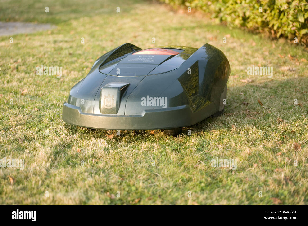 Automatic robot lawn mower cutting grass and heading towards camera - Stock Image