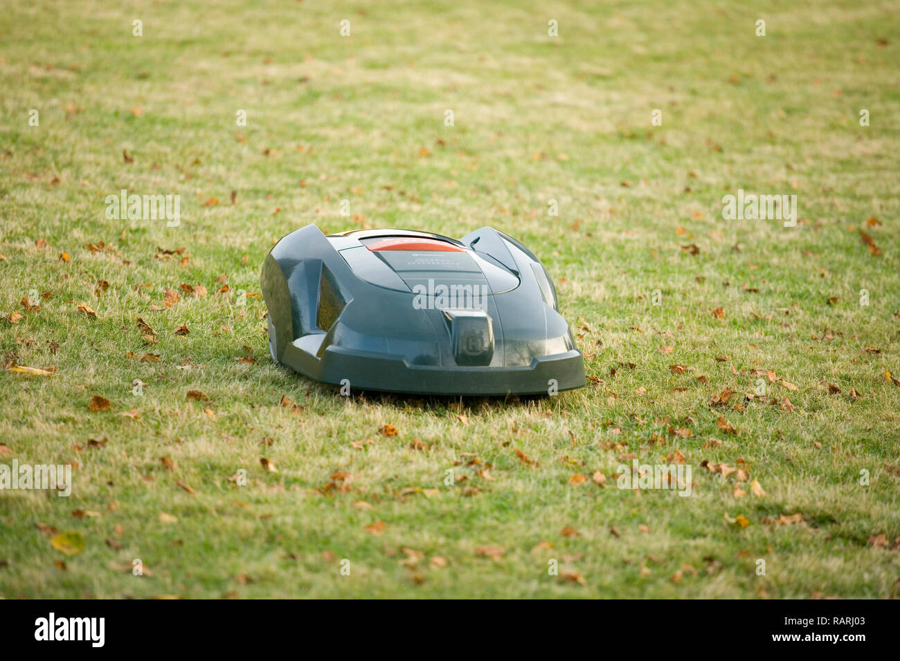 Automatic robot lawn mower cutting grass and heading towards the camera - Stock Image
