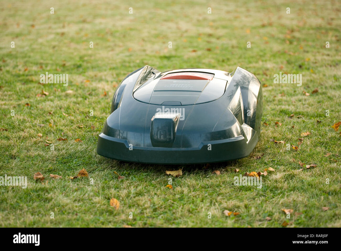 Green automatic robot lawnmower cutting grass head on approaching camera - Stock Image